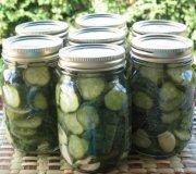 Garlic Dill pickles (Lexibule)