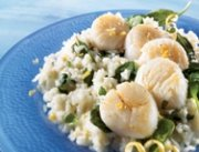 Seared scallops on lemon-mascarpone risotto
