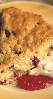CARNATION Traditional Scones